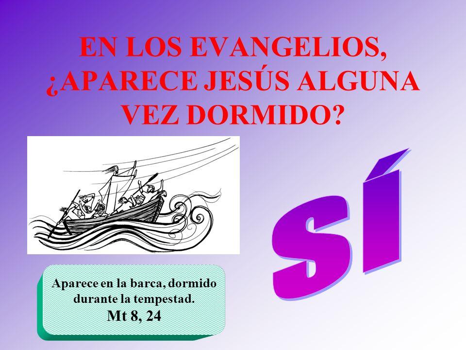 EN LOS EVANGELIOS, ¿APARECE JESÚS ALGUNA VEZ DORMIDO