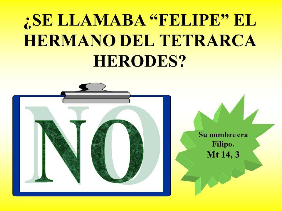 ¿SE LLAMABA FELIPE EL HERMANO DEL TETRARCA HERODES
