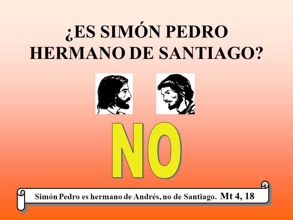 ¿ES SIMÓN PEDRO HERMANO DE SANTIAGO