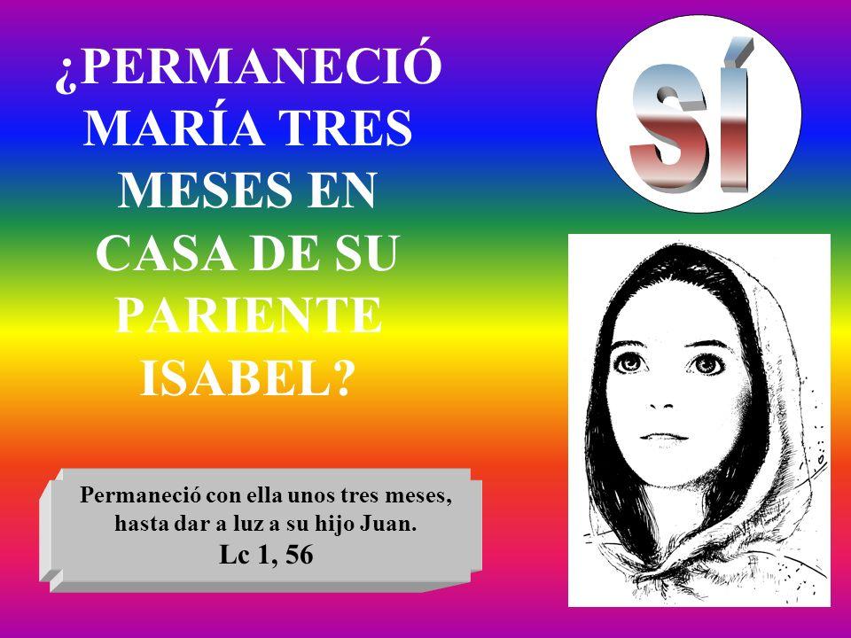 ¿PERMANECIÓ MARÍA TRES MESES EN CASA DE SU PARIENTE ISABEL