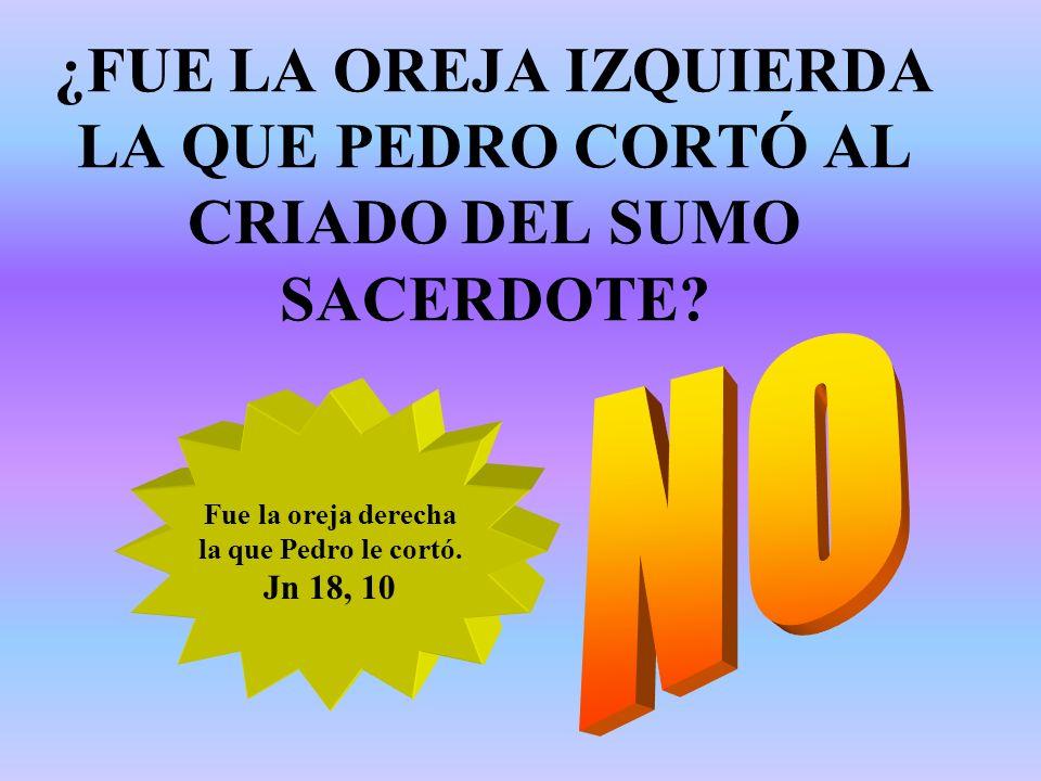 ¿FUE LA OREJA IZQUIERDA LA QUE PEDRO CORTÓ AL CRIADO DEL SUMO SACERDOTE