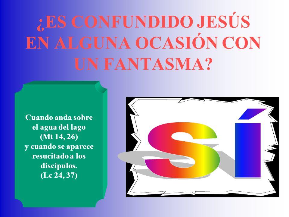 ¿ES CONFUNDIDO JESÚS EN ALGUNA OCASIÓN CON UN FANTASMA
