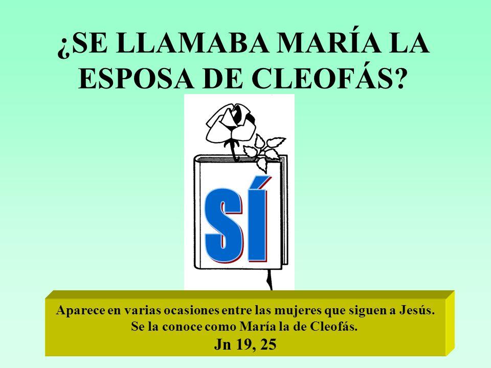 ¿SE LLAMABA MARÍA LA ESPOSA DE CLEOFÁS
