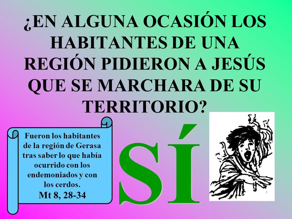 ¿EN ALGUNA OCASIÓN LOS HABITANTES DE UNA REGIÓN PIDIERON A JESÚS QUE SE MARCHARA DE SU TERRITORIO