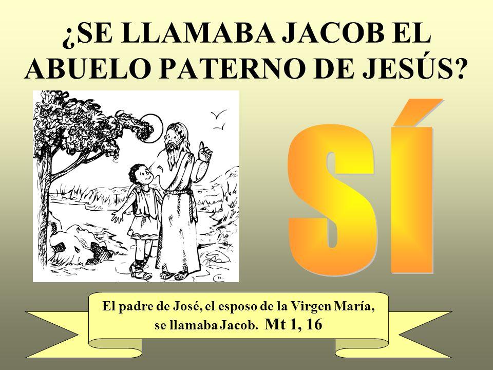¿SE LLAMABA JACOB EL ABUELO PATERNO DE JESÚS