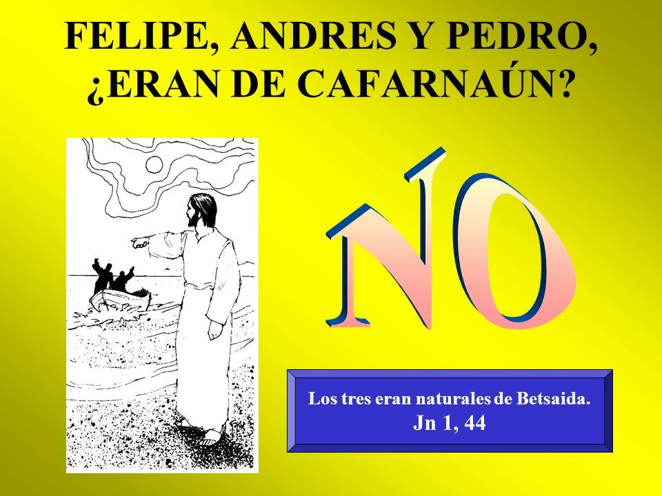 FELIPE, ANDRES Y PEDRO, ¿ERAN DE CAFARNAÚN