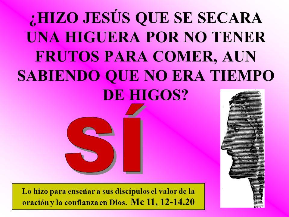 ¿HIZO JESÚS QUE SE SECARA UNA HIGUERA POR NO TENER FRUTOS PARA COMER, AUN SABIENDO QUE NO ERA TIEMPO DE HIGOS