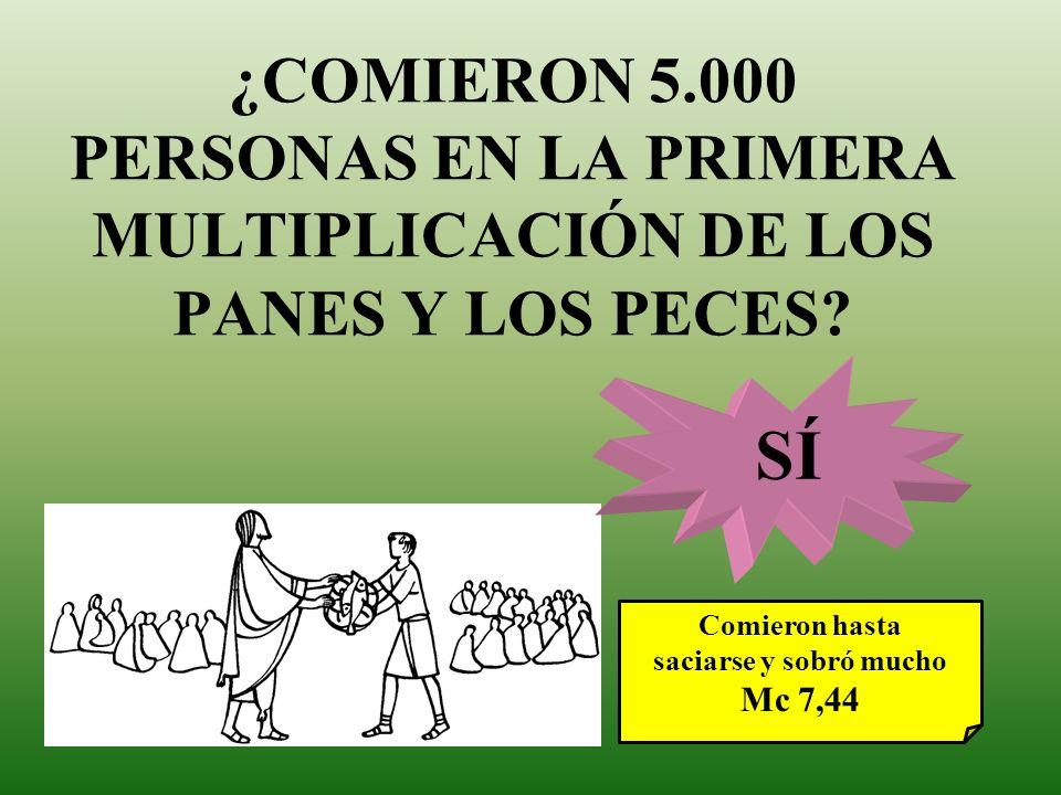 ¿COMIERON 5.000 PERSONAS EN LA PRIMERA MULTIPLICACIÓN DE LOS PANES Y LOS PECES