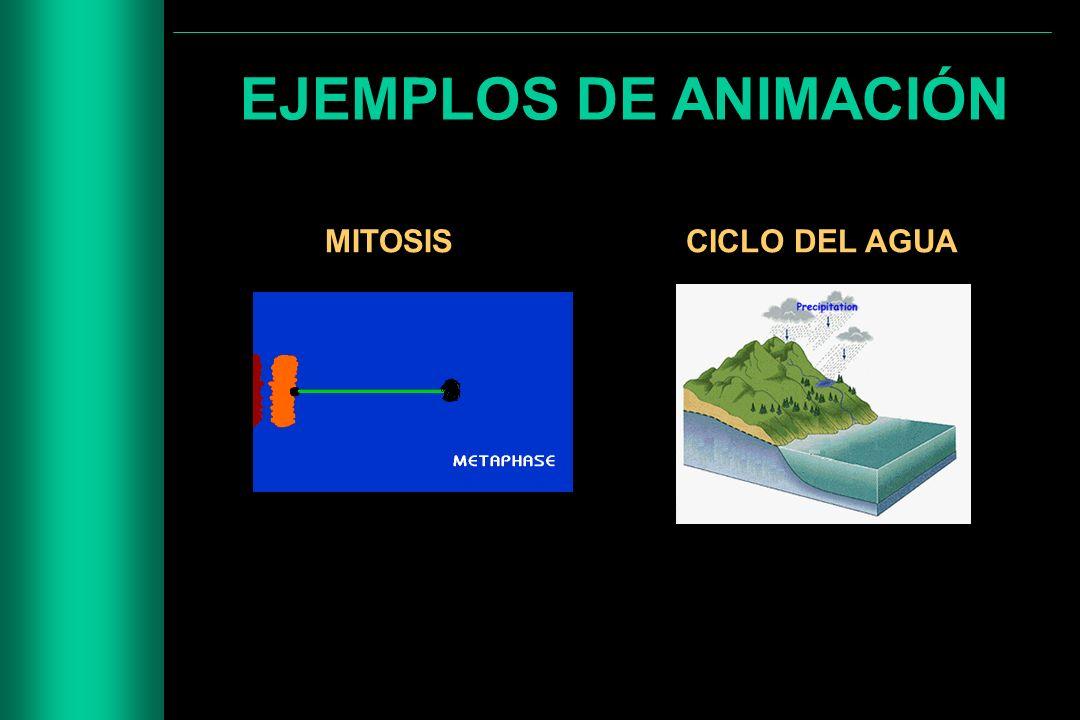 EJEMPLOS DE ANIMACIÓN MITOSIS CICLO DEL AGUA