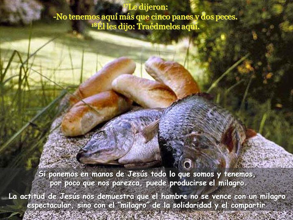 17Le dijeron: -No tenemos aquí más que cinco panes y dos peces