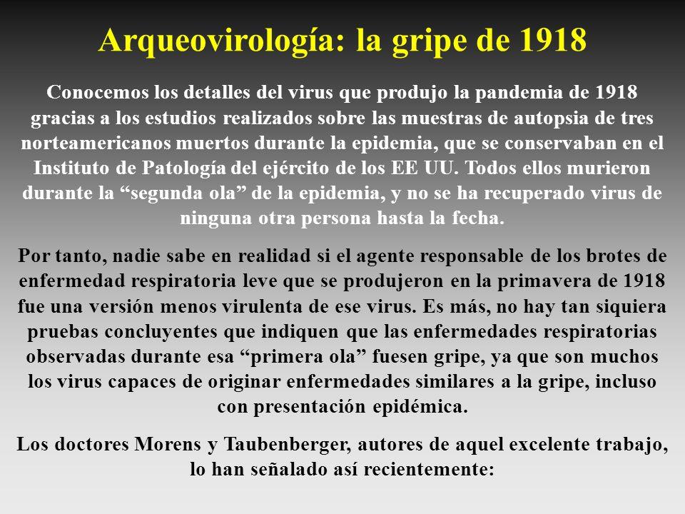 Arqueovirología: la gripe de 1918
