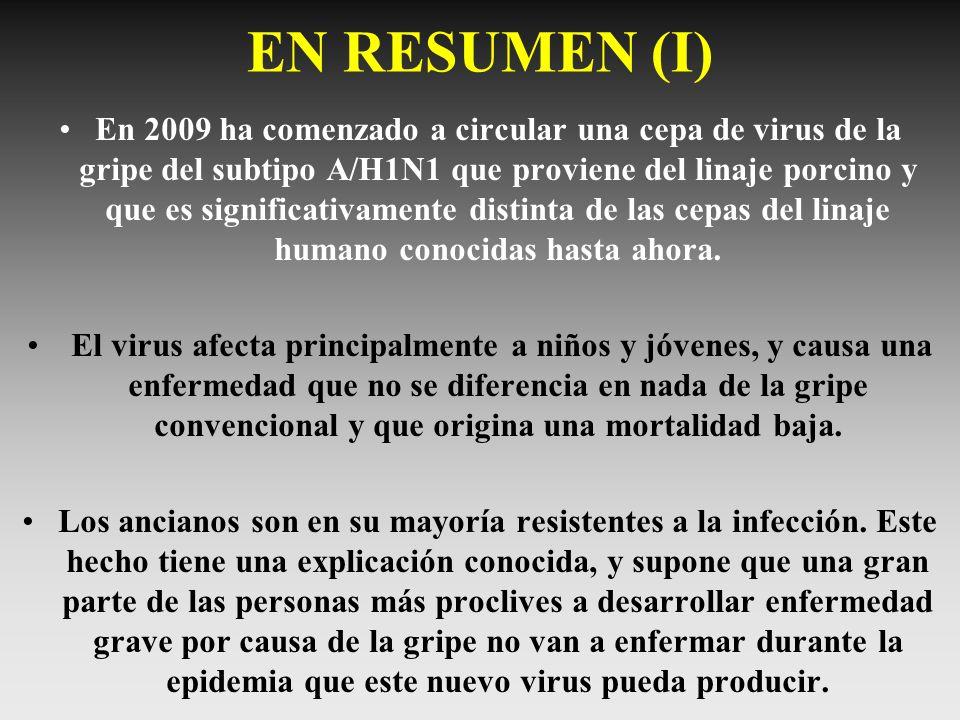 EN RESUMEN (I)
