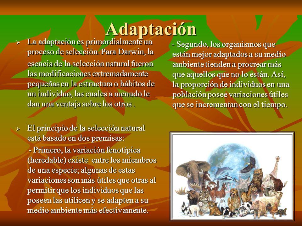 Adaptación La adaptación es primordialmente un proceso de selección. Para Darwin, la.