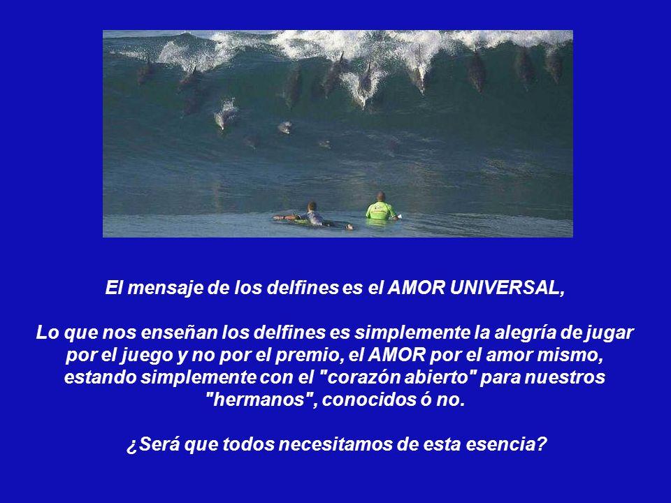 El mensaje de los delfines es el AMOR UNIVERSAL,