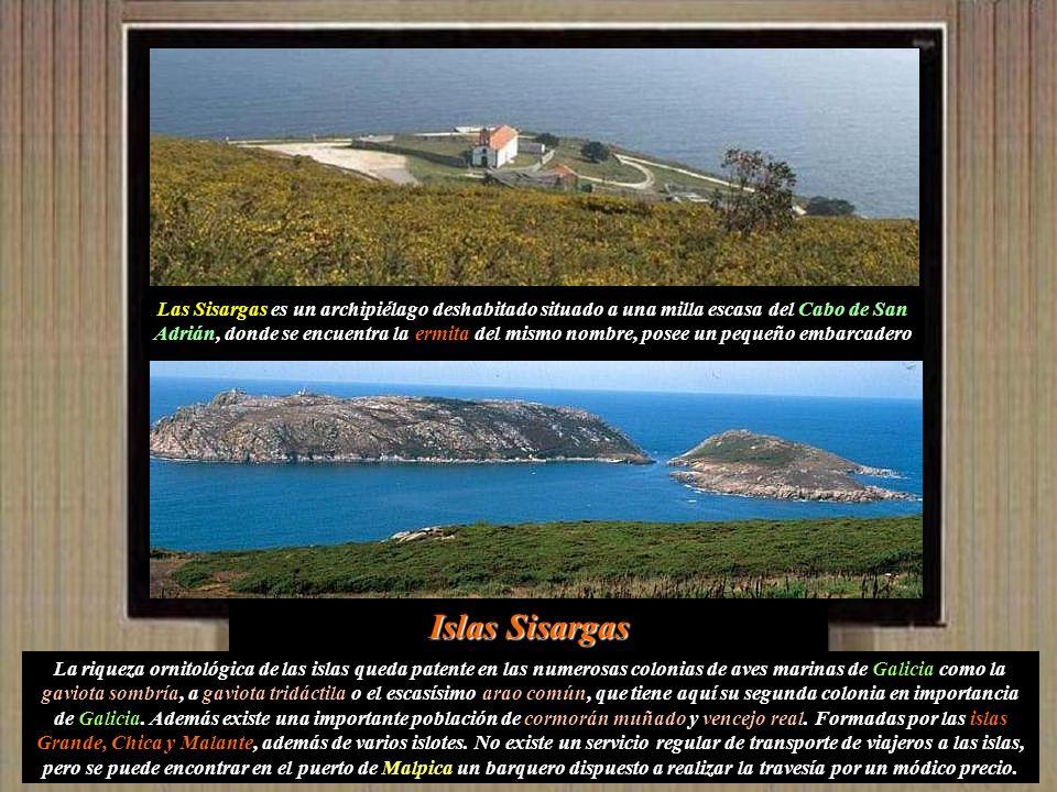 Las Sisargas es un archipiélago deshabitado situado a una milla escasa del Cabo de San Adrián, donde se encuentra la ermita del mismo nombre, posee un pequeño embarcadero