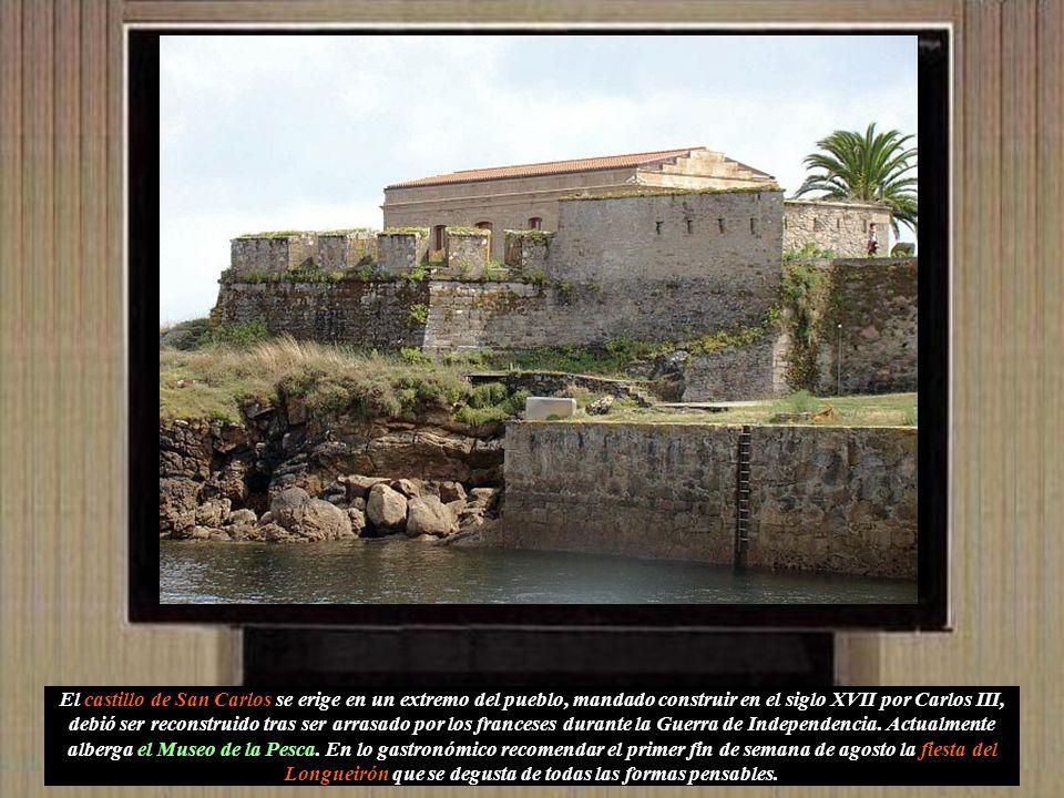El castillo de San Carlos se erige en un extremo del pueblo, mandado construir en el siglo XVII por Carlos III, debió ser reconstruido tras ser arrasado por los franceses durante la Guerra de Independencia.