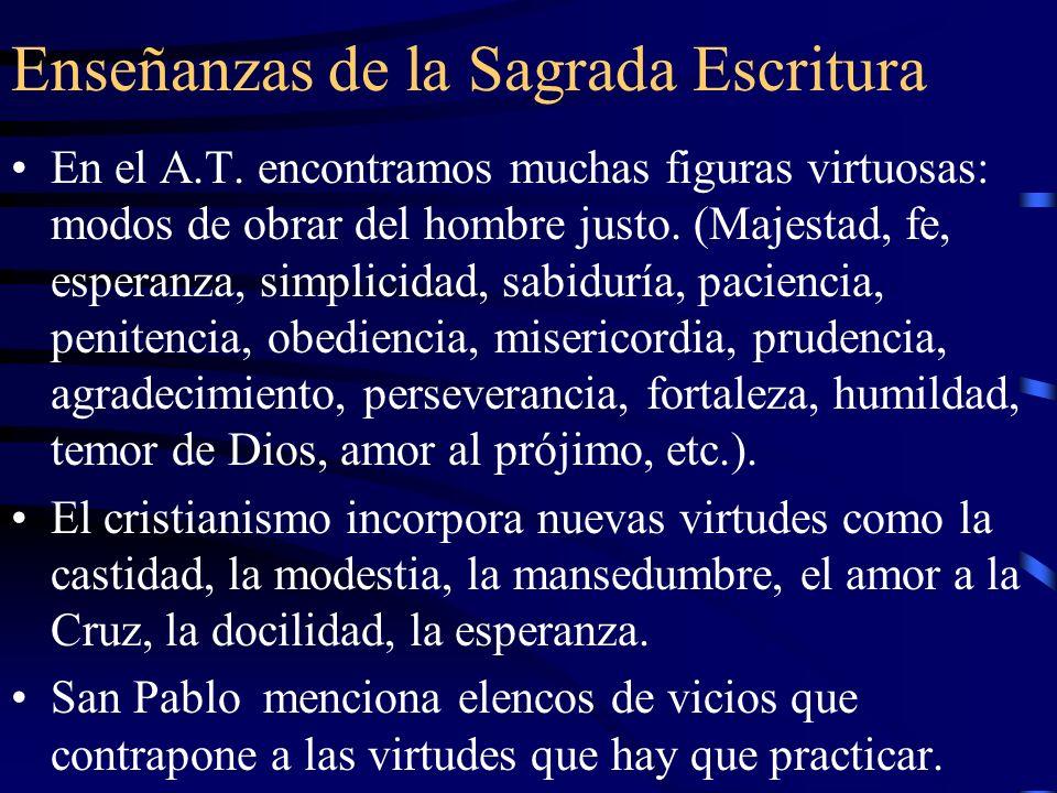 Enseñanzas de la Sagrada Escritura