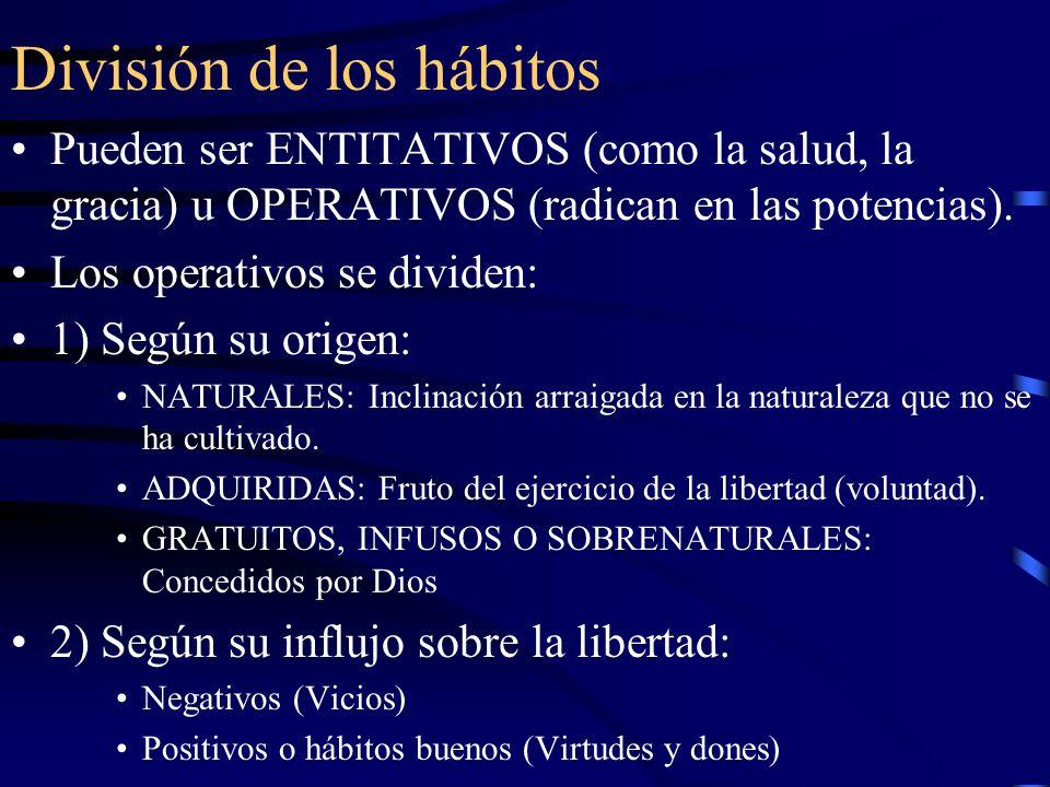 División de los hábitos