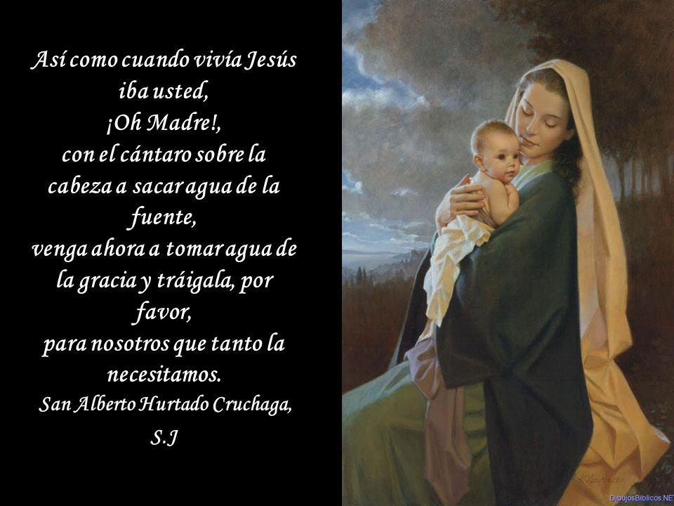 Así como cuando vivía Jesús iba usted, ¡Oh Madre!,