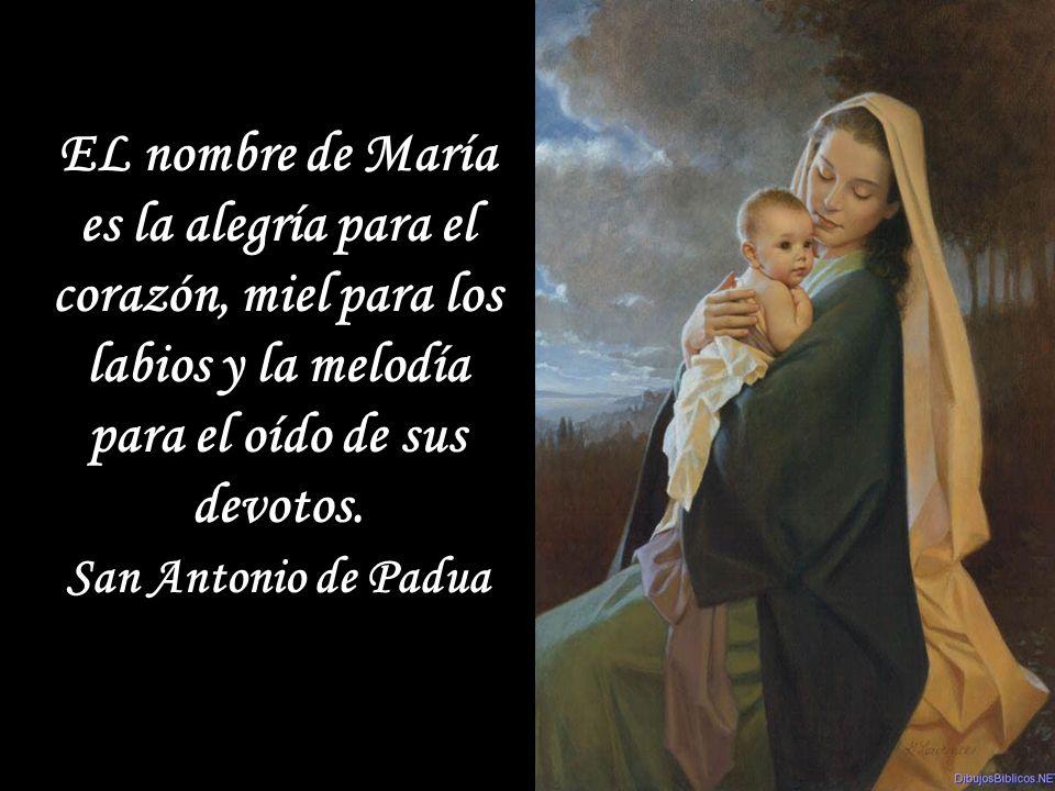 EL nombre de María es la alegría para el corazón, miel para los labios y la melodía para el oído de sus devotos.