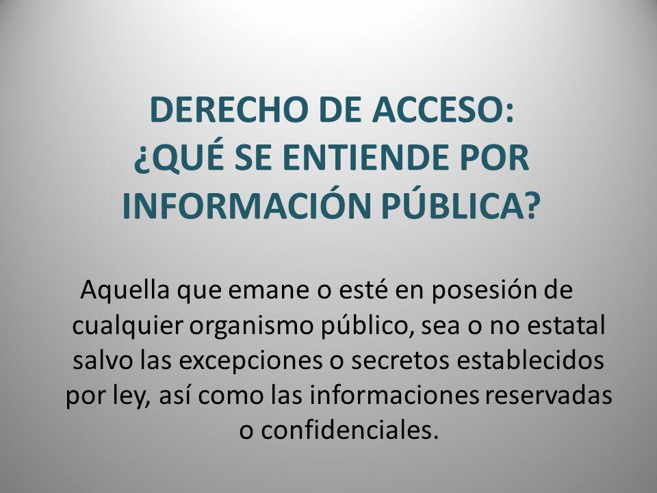 DERECHO DE ACCESO: ¿QUÉ SE ENTIENDE POR INFORMACIÓN PÚBLICA