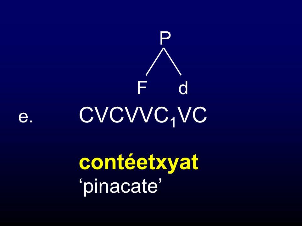 P F d e. CVCVVC1VC contéetxyat 'pinacate'