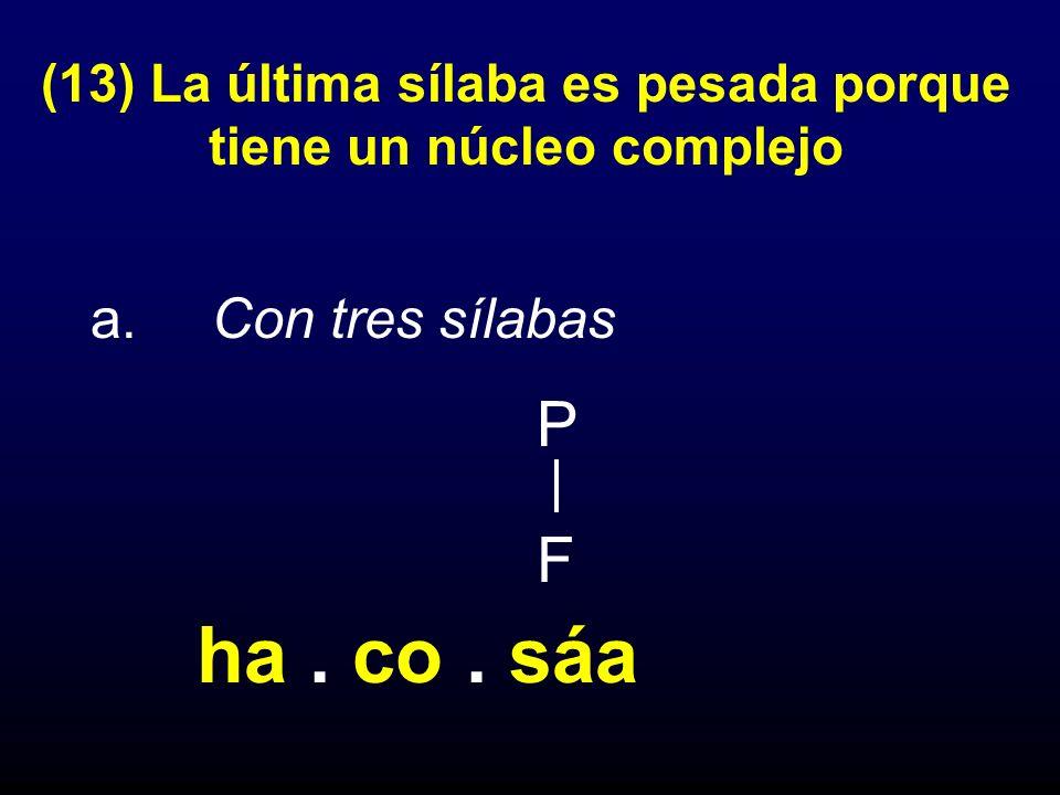 (13) La última sílaba es pesada porque tiene un núcleo complejo