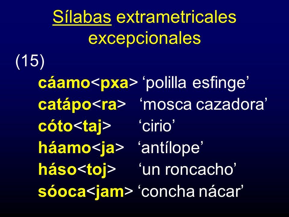 Sílabas extrametricales excepcionales