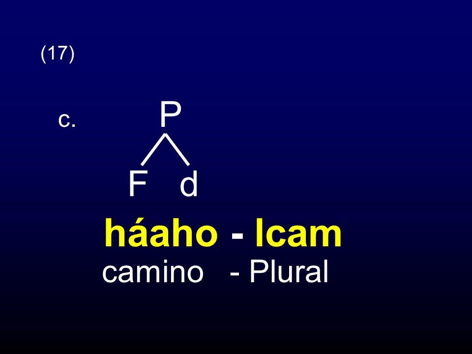 (17) c. P F d háaho - lcam camino - Plural