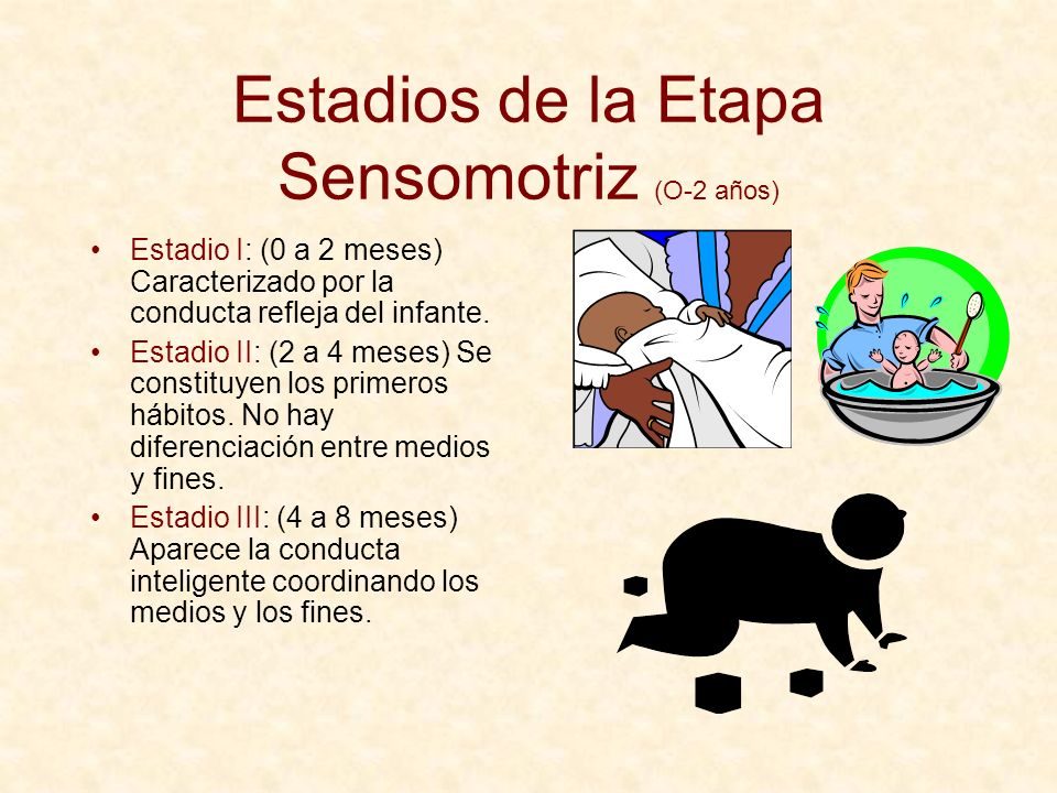 Estadios de la Etapa Sensomotriz (O-2 años)