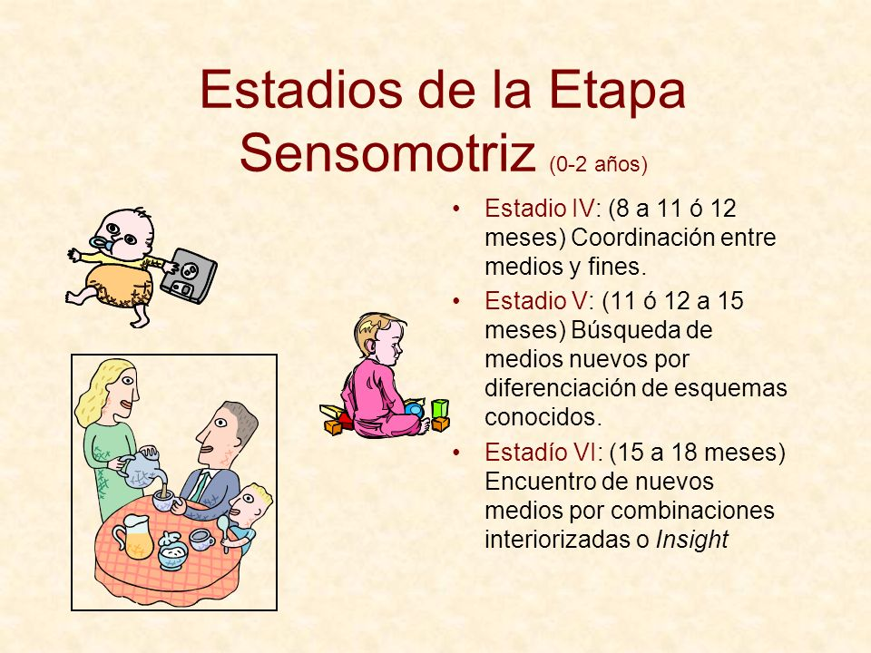 Estadios de la Etapa Sensomotriz (0-2 años)