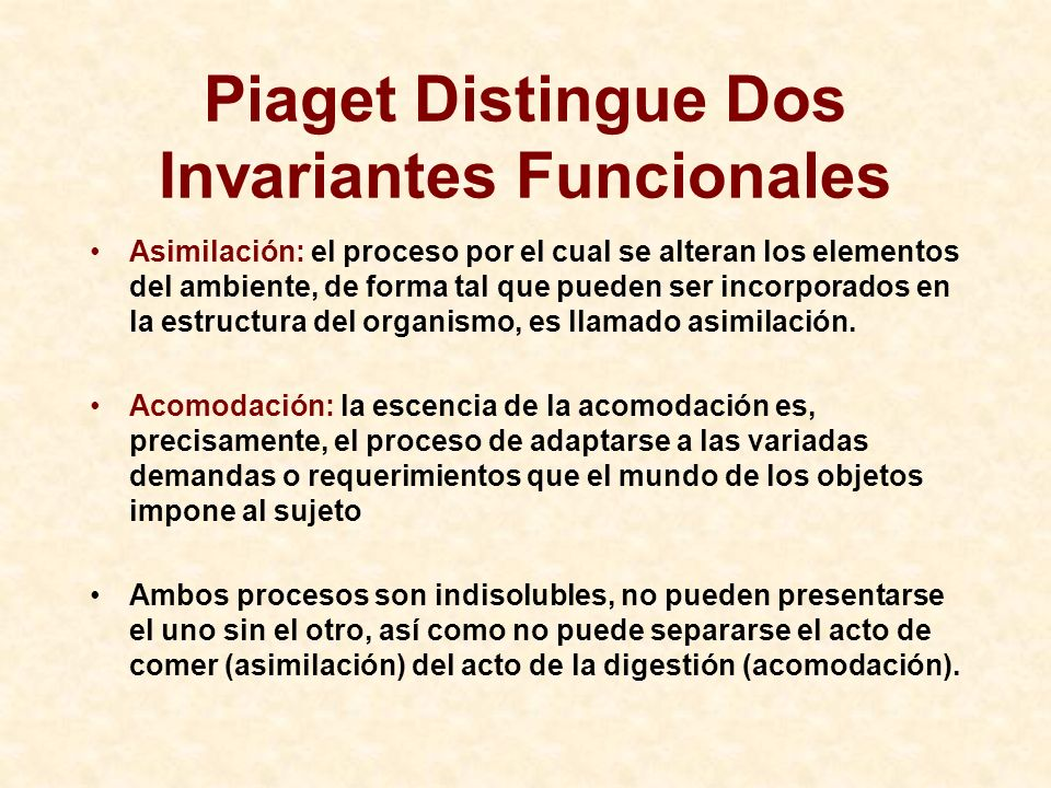 Piaget Distingue Dos Invariantes Funcionales