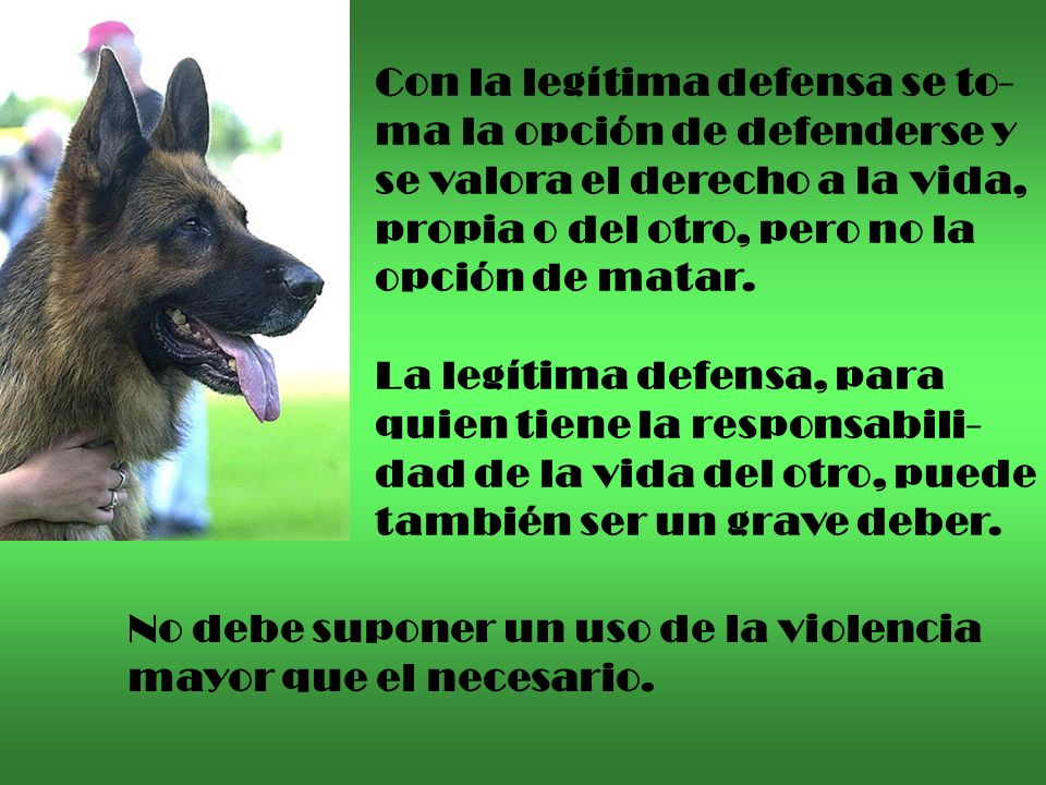 Con la legítima defensa se to-