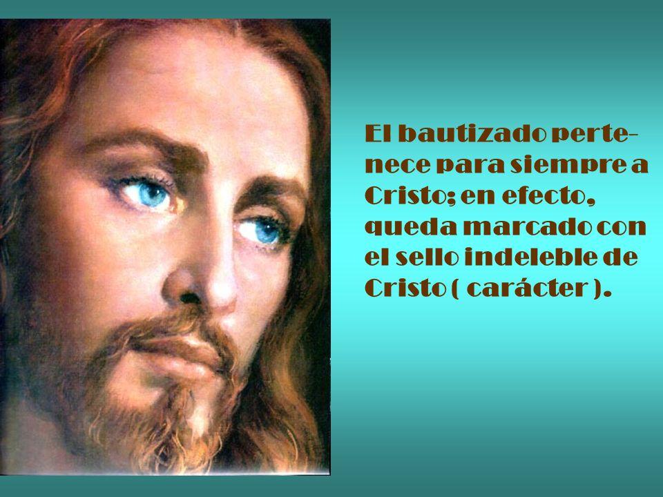 El bautizado perte- nece para siempre a. Cristo; en efecto, queda marcado con. el sello indeleble de.