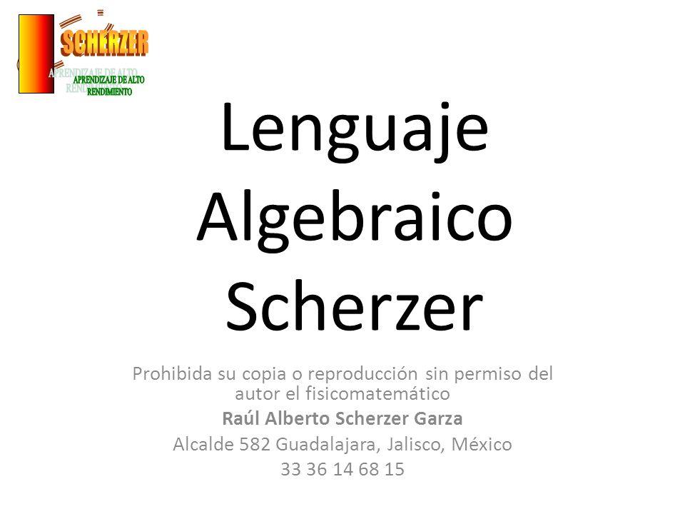 Lenguaje Algebraico Scherzer