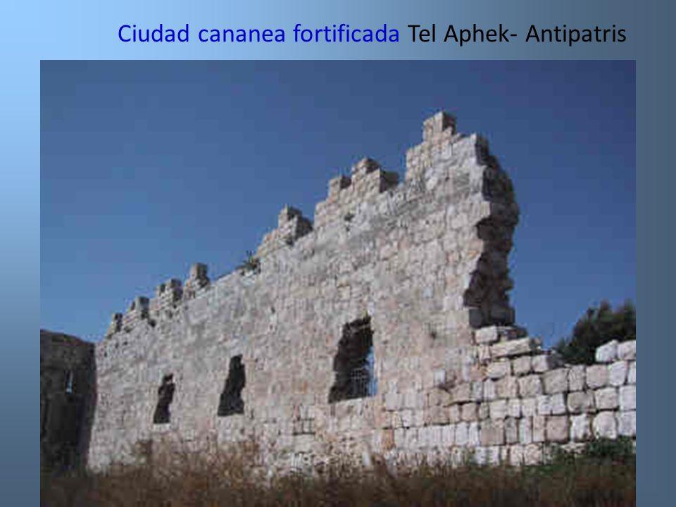 Ciudad cananea fortificada Tel Aphek- Antipatris