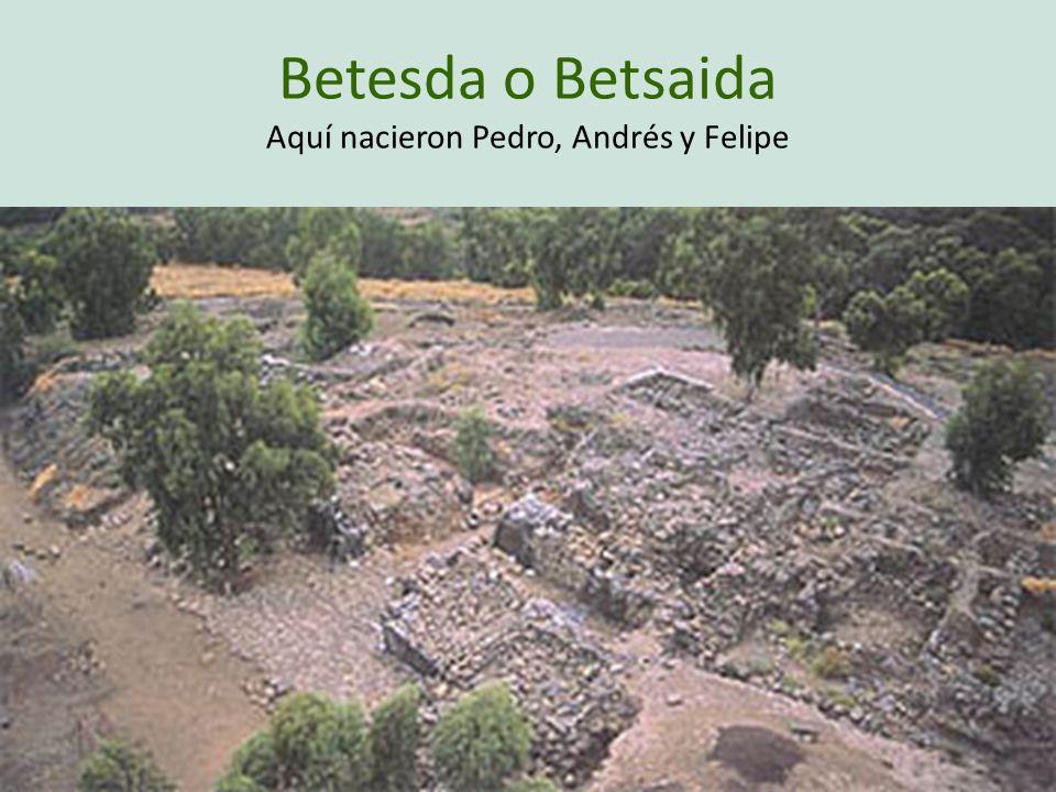 Betesda o Betsaida Aquí nacieron Pedro, Andrés y Felipe
