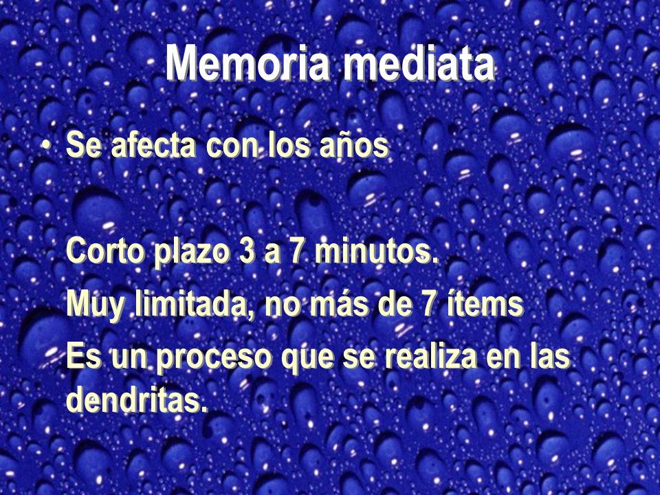 Memoria mediata Se afecta con los años Corto plazo 3 a 7 minutos.