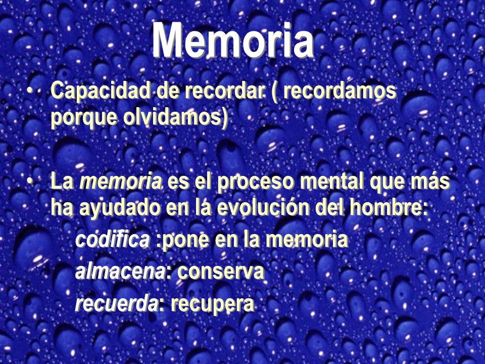 Memoria Capacidad de recordar ( recordamos porque olvidamos)