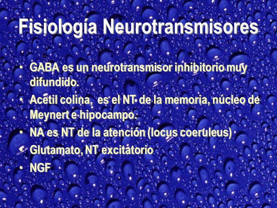 Fisiología Neurotransmisores
