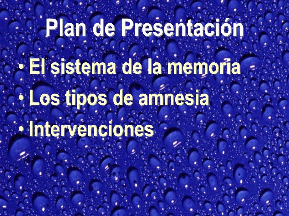 Plan de Presentación El sistema de la memoria Los tipos de amnesia