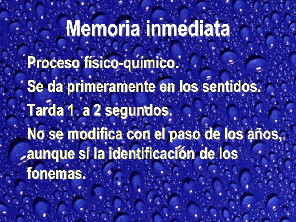 Memoria inmediata Proceso físico-químico.