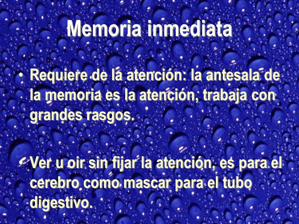 Memoria inmediata Requiere de la atención: la antesala de la memoria es la atención, trabaja con grandes rasgos.