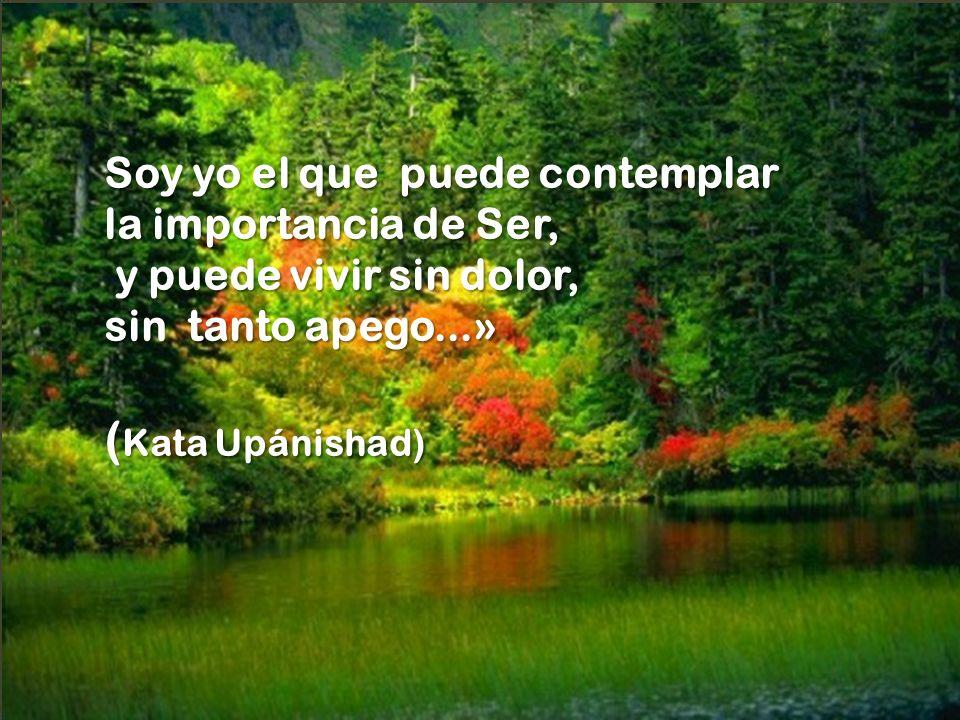 (Kata Upánishad) Soy yo el que puede contemplar la importancia de Ser,