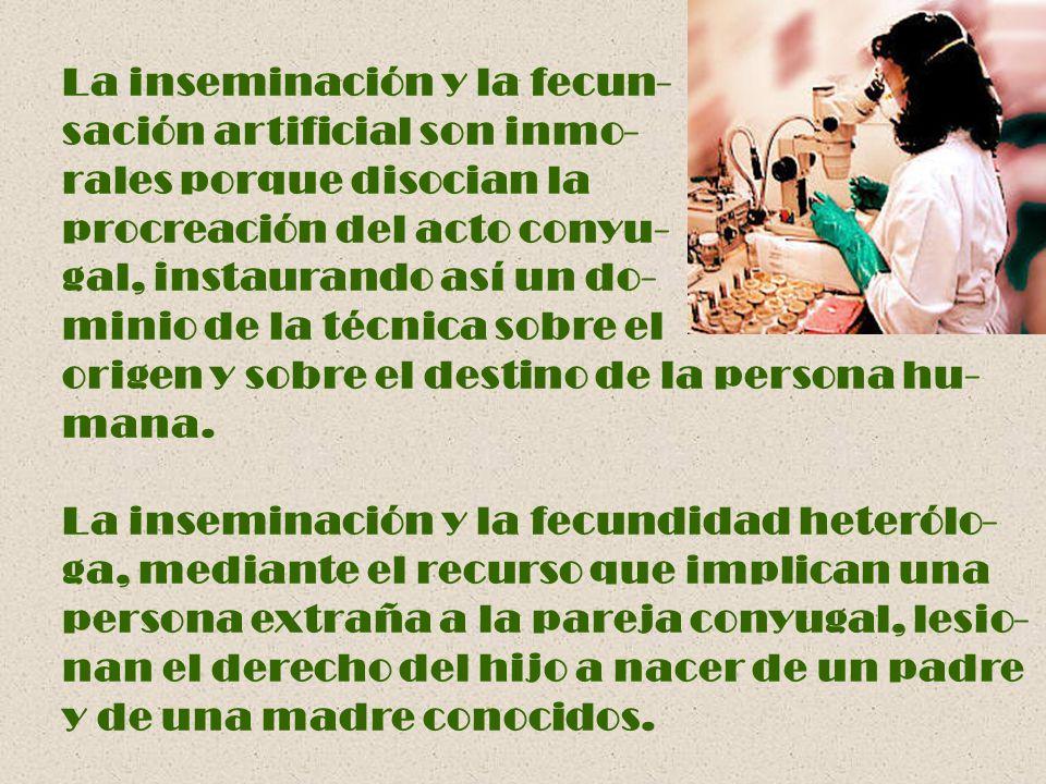 La inseminación y la fecun-