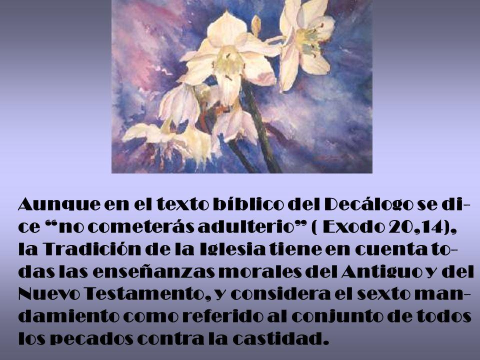 Aunque en el texto bíblico del Decálogo se di-