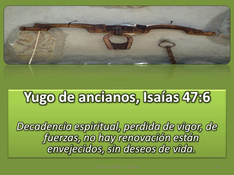 Yugo de ancianos, Isaías 47:6