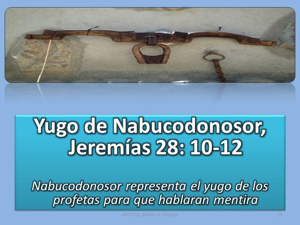 Yugo de Nabucodonosor, Jeremías 28: 10-12