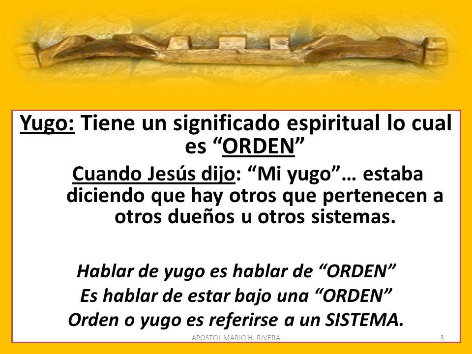 Yugo: Tiene un significado espiritual lo cual es ORDEN