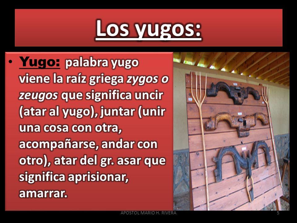 Los yugos: